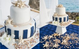 the shell cake